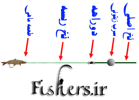 انواع ریسه ها در آب برای صید ماهی قزل آلا