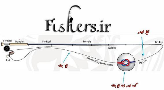 انواع ریسه های ماهیگیری